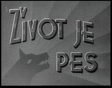 zivot_je_pes_fex_01_dvd