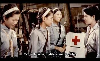 Dobrovolnice v nemocnici
