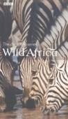 Wild Africa - originální vydání