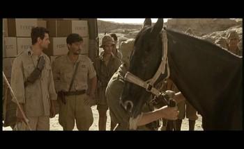 To je opravdu Mussoliniho kůň, jeho osobní