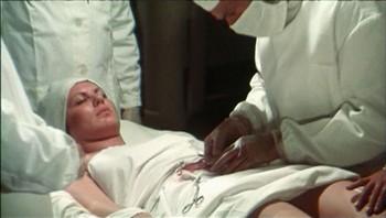 Pokusy s transplantacemi