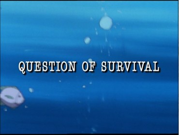 Boj o přežití