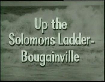 Vzhůru na Šalamounovy ostorvy - Bougainville