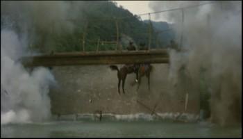 Koně ve vzduchu