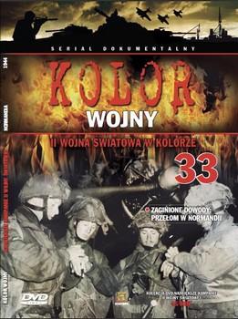 Obal polského DVD