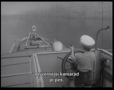 dobrodruzstvi_sesti_trampu_05_dvd